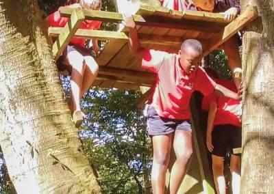 Top Woods Fort